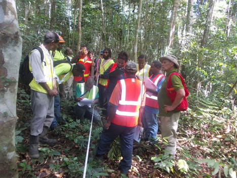 Covering the basics of forest surveying and mapping.